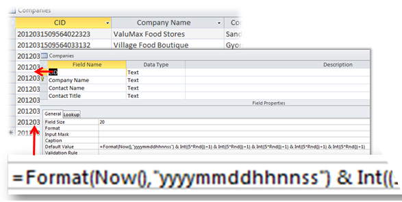 Microsoft Access Random Number: Setting As The Default Value